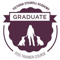 VSA Academy Logo